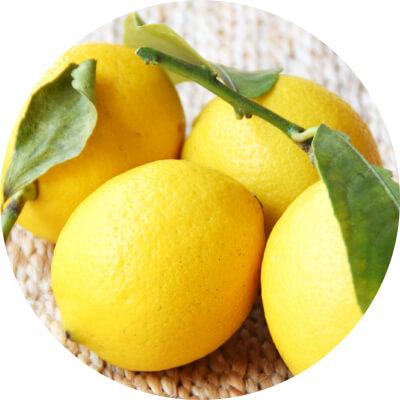 2.レモン由来の天然葉酸